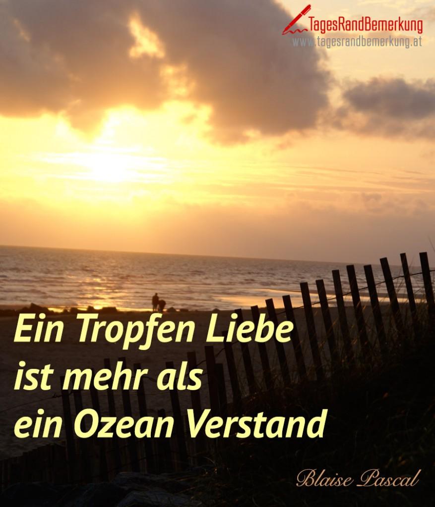 Ein Tropen Liebe ist mehr als ein Ozean Verstand.