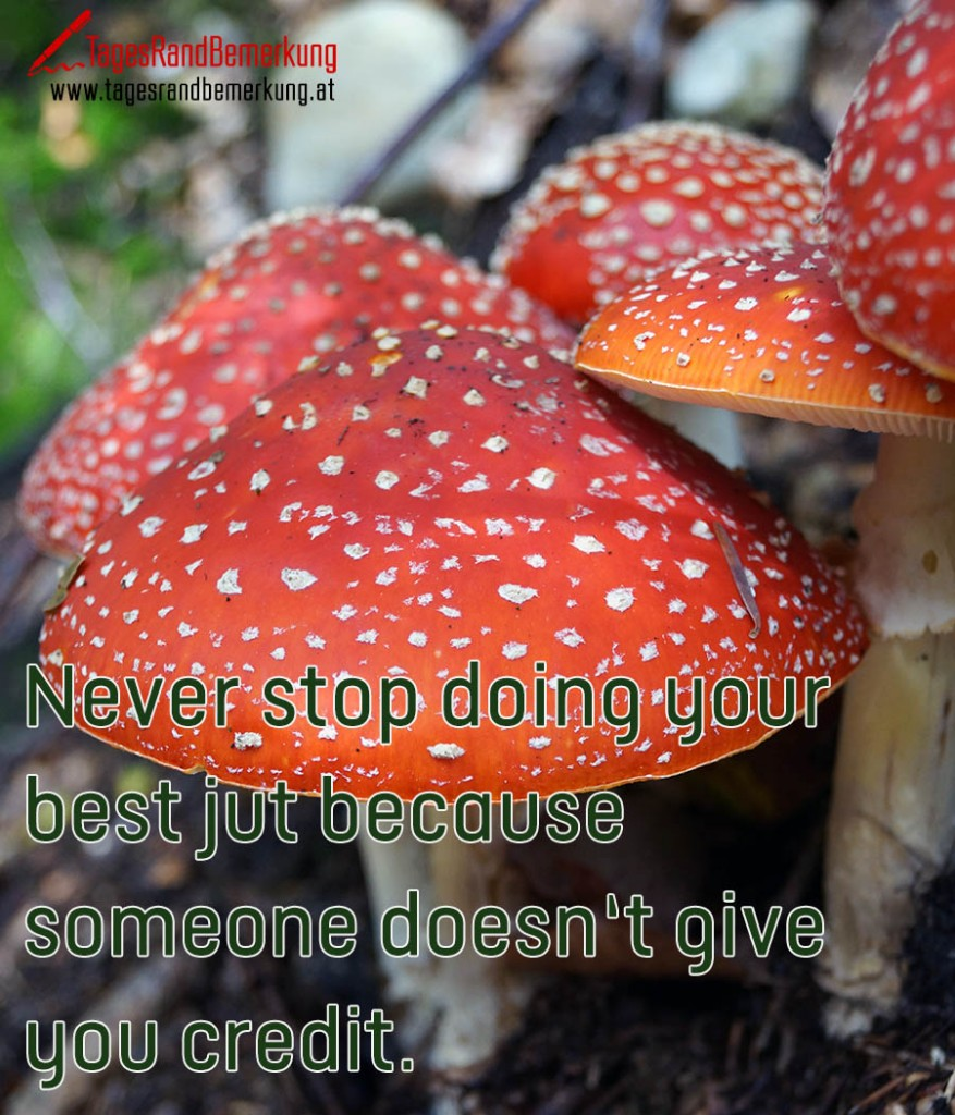 Never stop doing your best jut because someone doesn't give you credit.