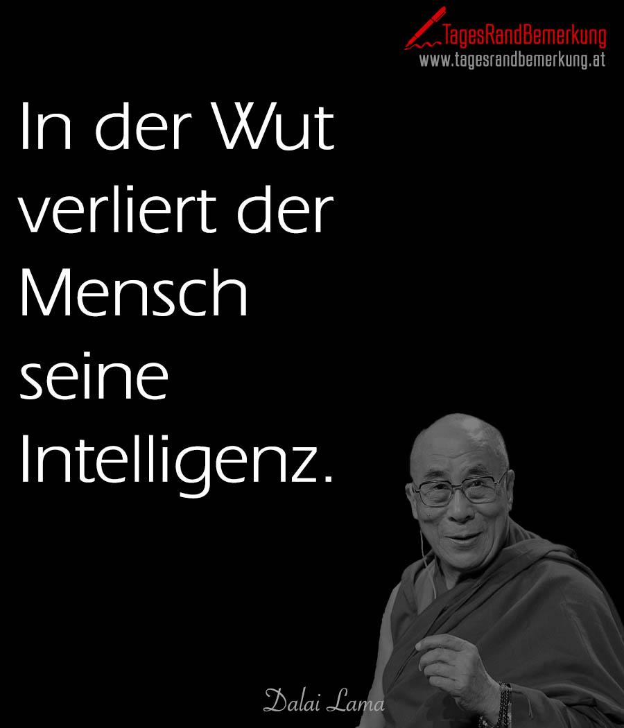 In Der Wut Verliert Der Mensch Seine Intelligenz Zitat