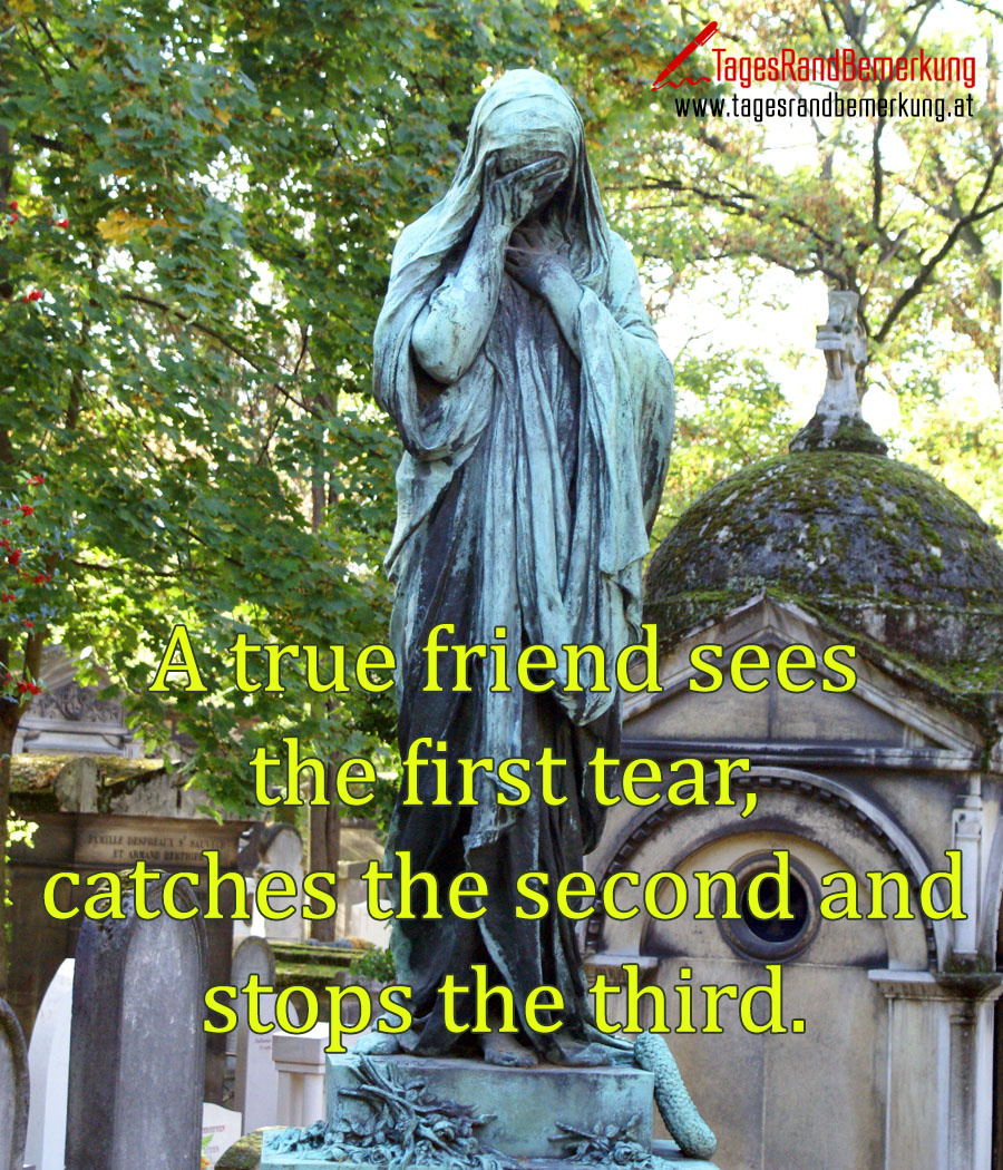 A true friend sees the first tear, catches the second and stops the third.