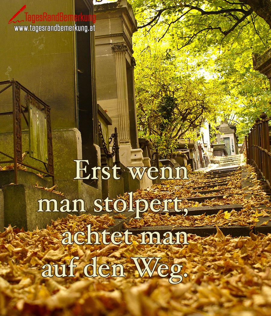 https://www.tagesrandbemerkung.at/wp-content/uploads/2017/07/tagesrandbemerkung-kraft-motivation-ziel-weg-zitat-spruch-1966.jpg