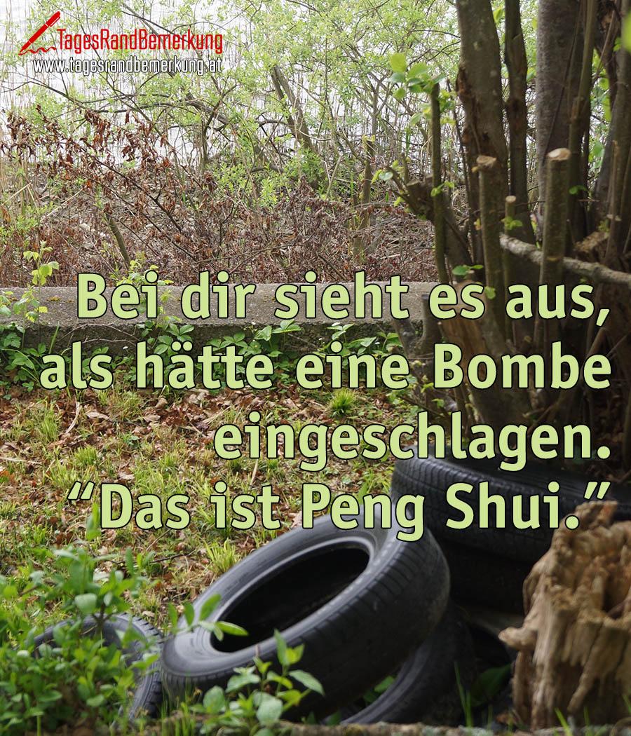 """Bei dir sieht es aus, als hätte eine Bombe eingeschlagen. """"Das ist Peng Shui."""""""