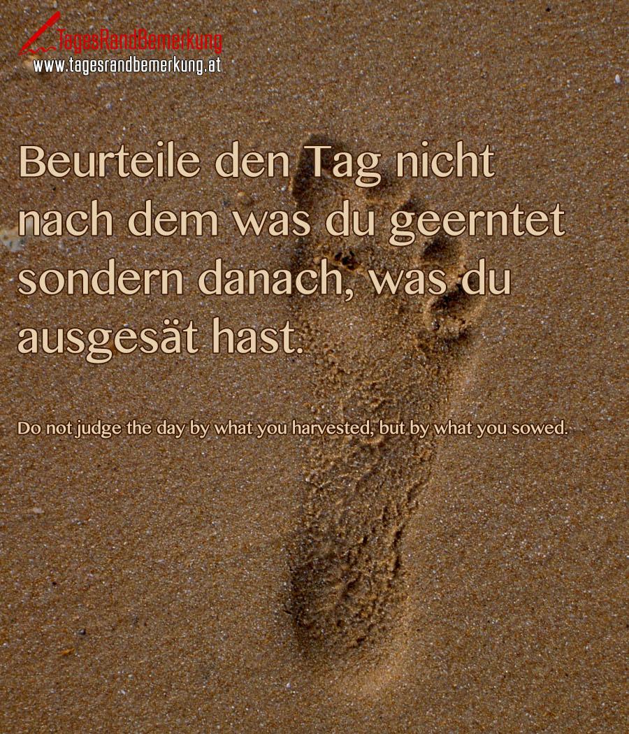 Beurteile den Tag nicht nach dem was du geerntet sondern danach, was du ausgesät hast. | Do not judge the day by what you harvested, but by what you sowed.