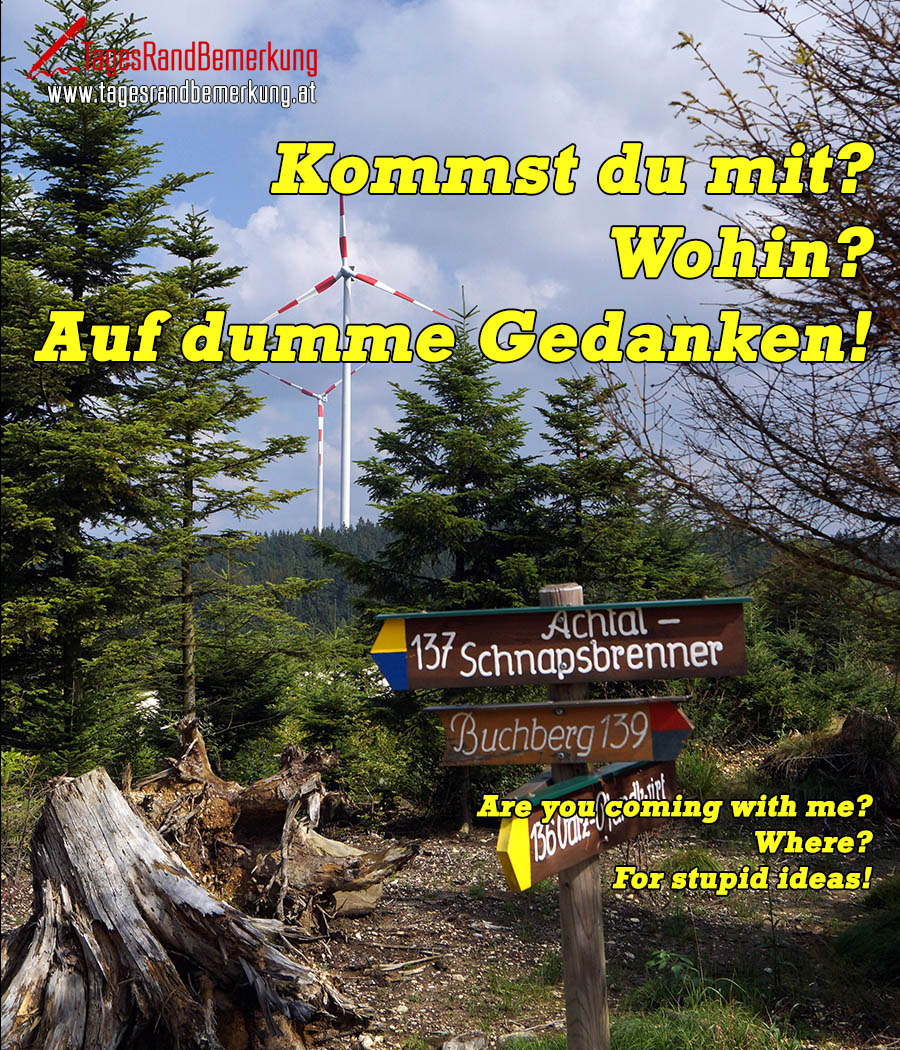 Kommst du mit? Wohin? Auf dumme Gedanken! | Are you coming with me? Where? On stupid thoughts!