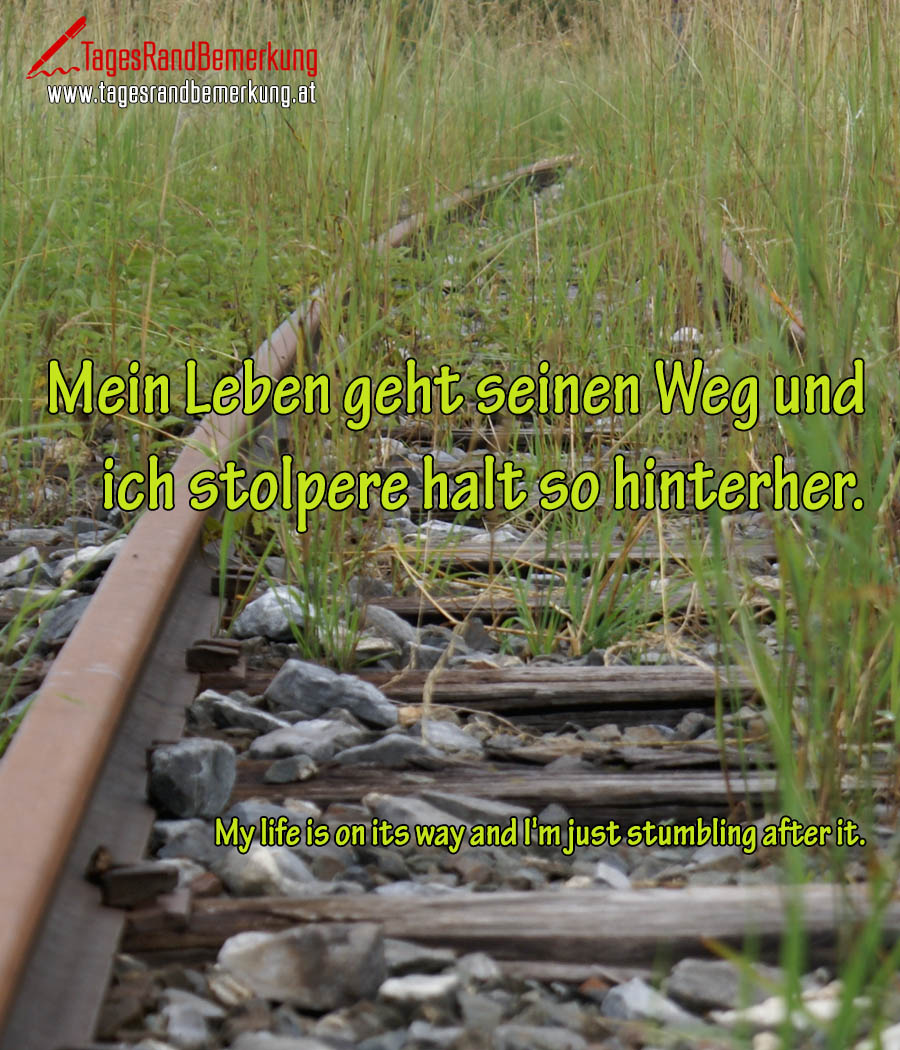 Mein Leben geht seinen Weg und ich stolpere halt so hinterher. | My life is on its way and I'm just stumbling after it.