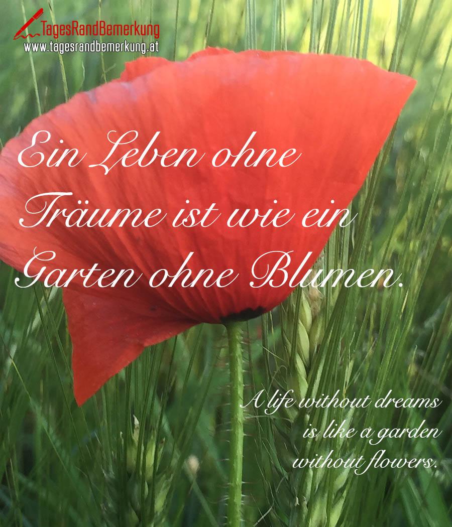 Ein Leben ohne Träume ist wie ein Garten ohne Blumen. | A life without dreams is like a garden without flowers.