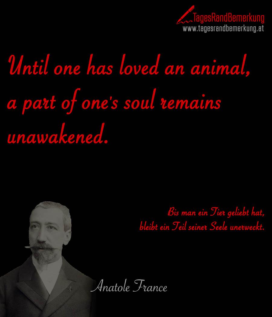 Until one has loved an animal, a part of one's soul remains unawakened. | Bis man ein Tier geliebt hat, bleibt ein Teil seiner Seele unerweckt.