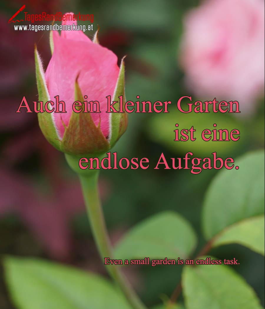 Auch ein kleiner Garten ist eine endlose Aufgabe. | Even a small garden is an endless task.